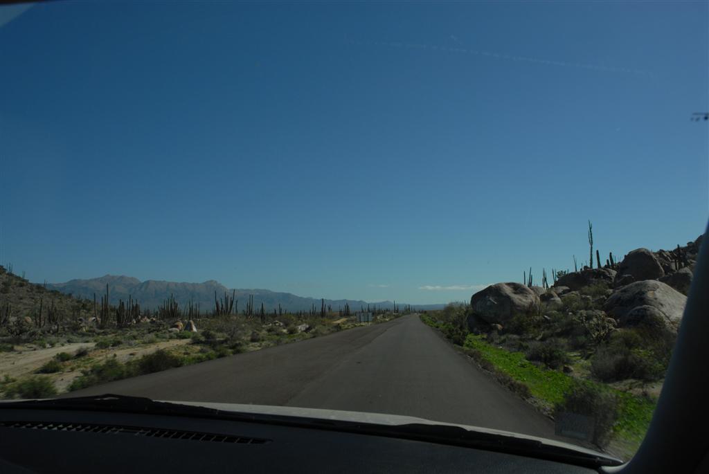 Still In La Paz