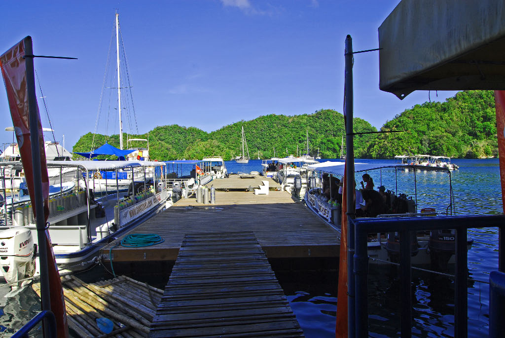 Landfall Palau